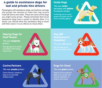 Assistance Dogs crop