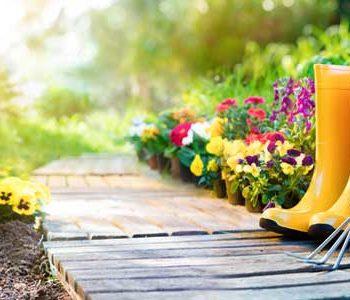 gardening story